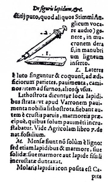 File:Pencil of Gessner .jpg