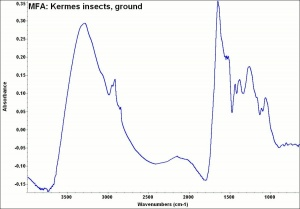 MFA- Kermes insects, ground.jpg